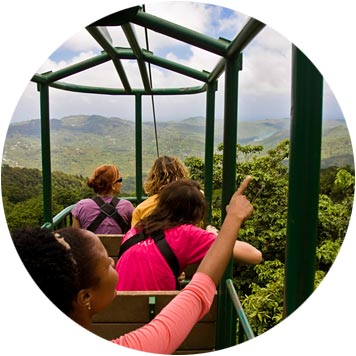 St. Lucia Rainforest Tram Tour