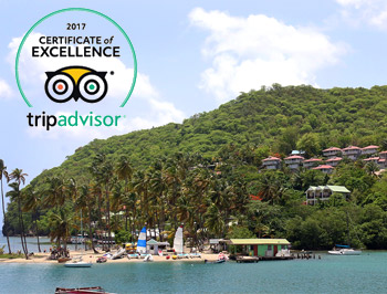 Oasis Marigot Celebrates Tripavidsor's Certificate of Excellence for 2017!
