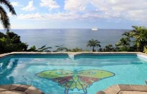 butterfly beach house