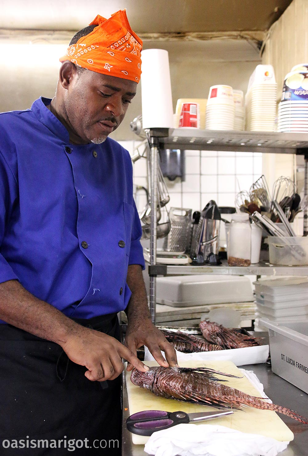 chef rainforest hideaway marigot bay explains lionfish