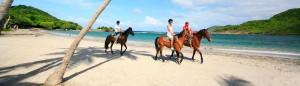 horseback riding saint lucia