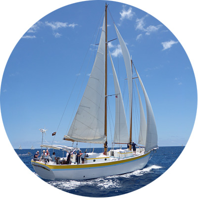 sailing-caribbean-charter-vacation