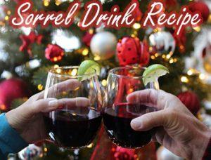 sorrel drink recipe thumb